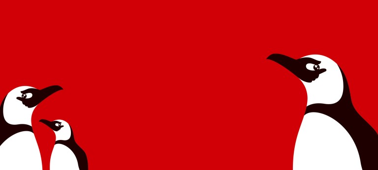 Black and white illustration of a penguin on a red background